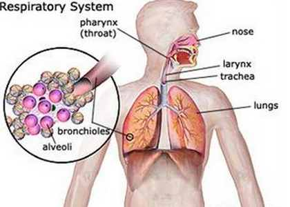 Hypersensitivity pneumonitis