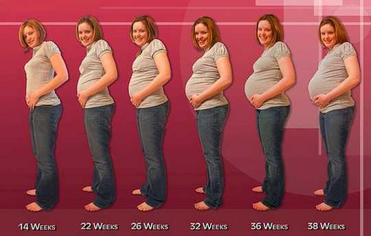 pregnancy symptoms week by week image