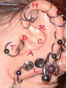 Locations of cartilage piercing